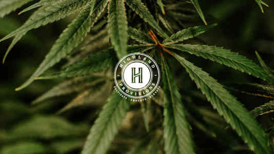 Highland Provisions logo superimposed over a photo of cannabis leaves.