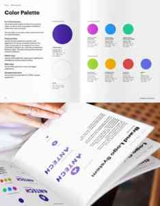 Page from Antech's brand guidelines explaining the brand's new color palette.